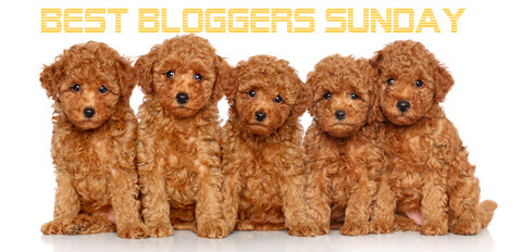 Best Bloggers Sunday 8