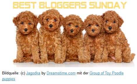 Best Bloggers Sunday Part 16(nachgeholt)&17