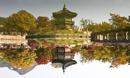 Coming soon: Neue Kooperationspartnerschaft mit Korea!