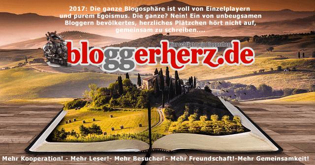 Bloggerherz.de nach Hackerangriff wieder eröffnet!